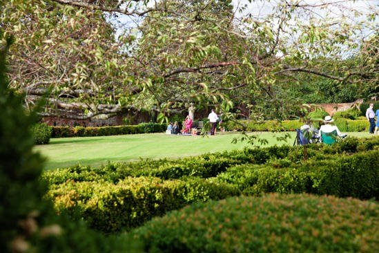 A fundraising picnic in the gardens