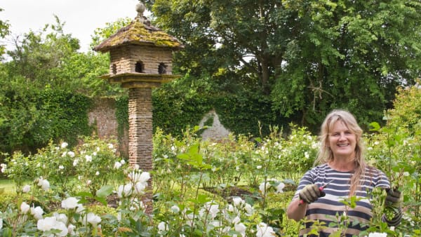 Meet New Gardener Nicky Webber